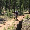 Buffalo Creek, Homestead, Charlies Cutoff, Buffalo Creek, Baldy Trails Sunday, May 19, 2013